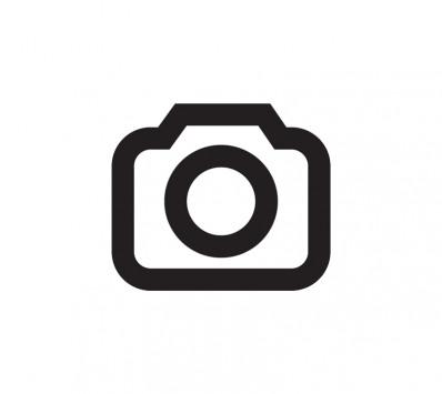 Sierra De Calar, TECCPO Professional 800W Sierra Caladora 0~3000 SPM, 1-6 Velocidad Variable, Profundidad De Corte:Madera 65mm, Metal 8mm, Cortes Biselados A -45°a 45°, Altura De Carrera 22mm- TAJS01P
